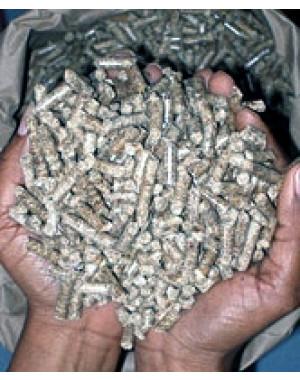 Pellet Granulé de bois 15kg