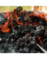 Charbon Houille pour Forge 30/50