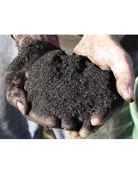 Charbon Biochar agriculture sachet de 500ml