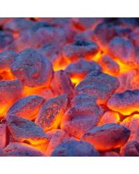 Boulets charbon Starcite 25 kg