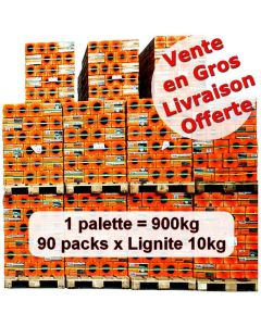 Achat en gros briquettes lignite 10kg x 90 packs
