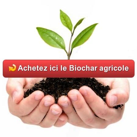 Biochar pour Agriculture
