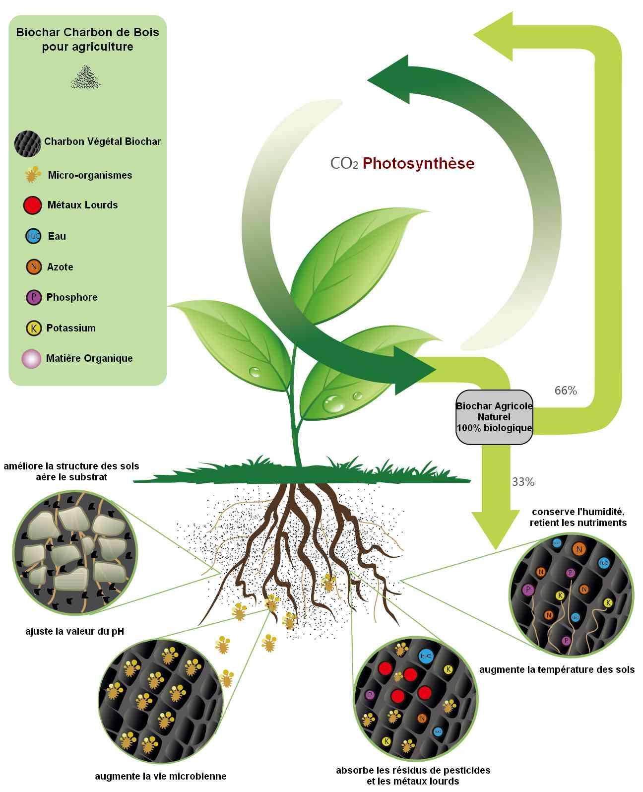 Biochar cycle agricole