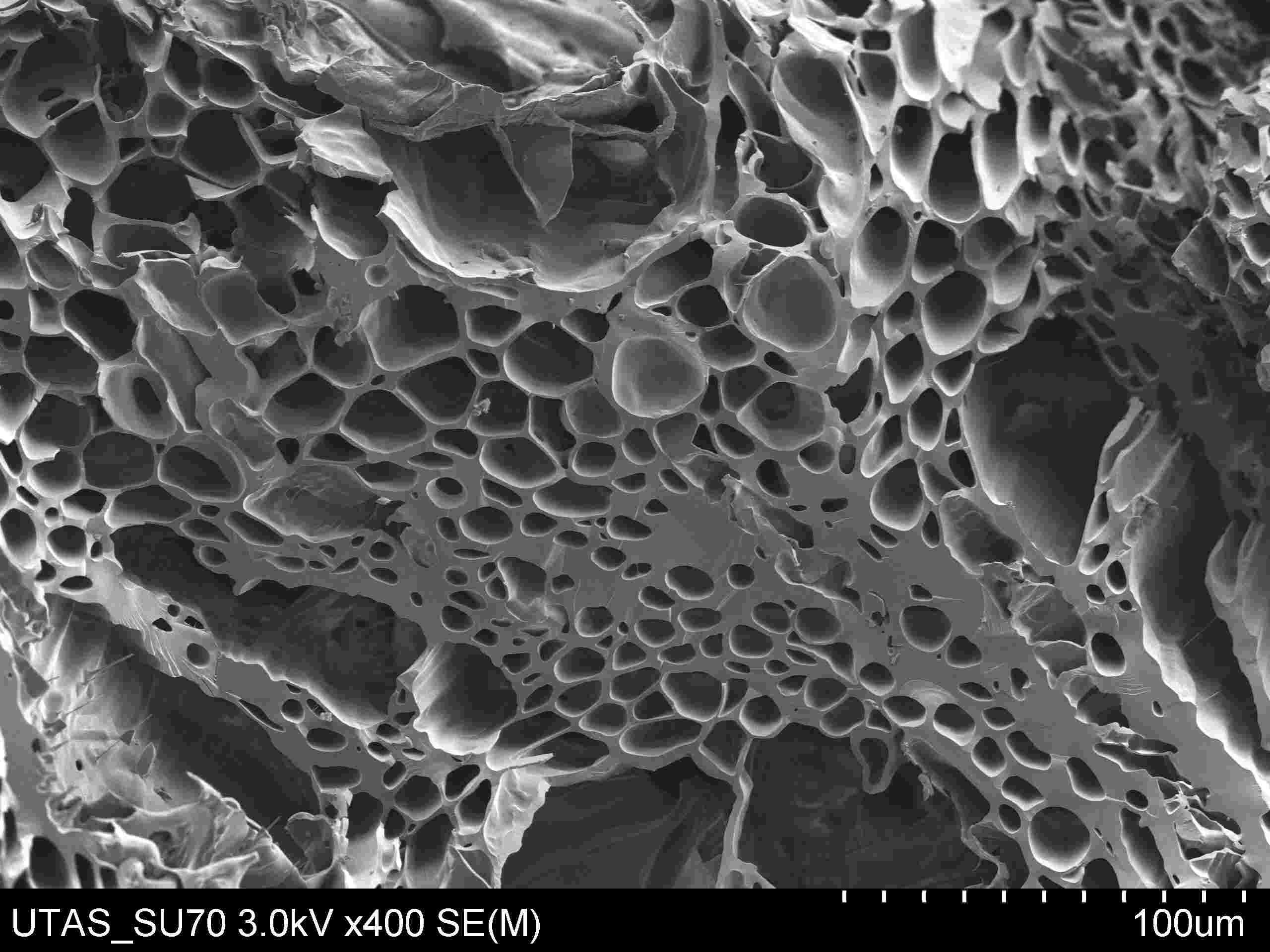 Biochar structure micro poreuse