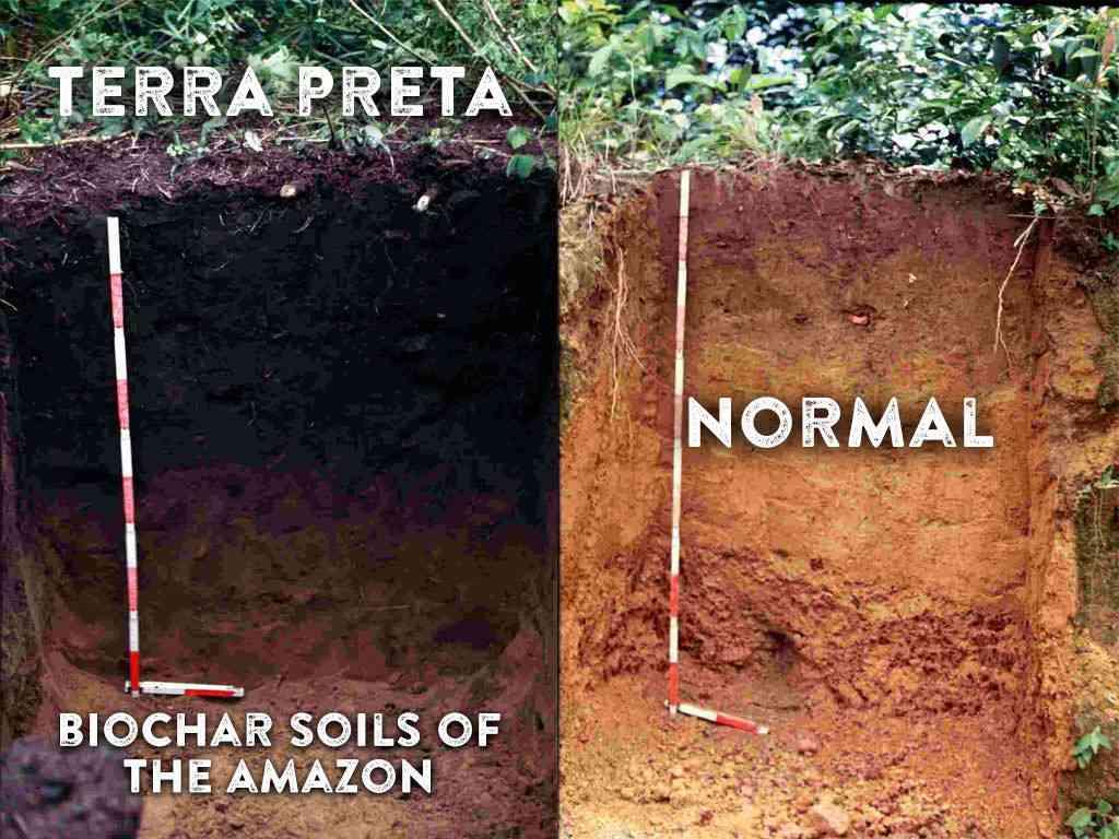 Terra Petra et Biochar
